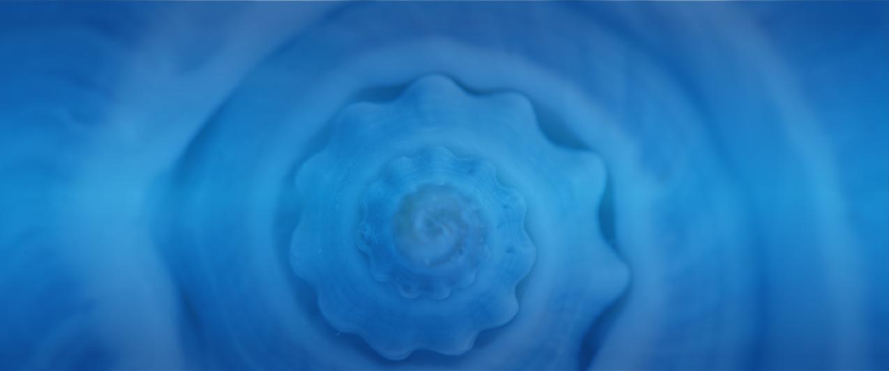 360_image